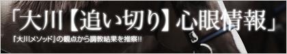 大川慶次郎『大川【追い切り】心眼情報』