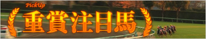 TURF VISION『Pick Up 重賞注目馬』